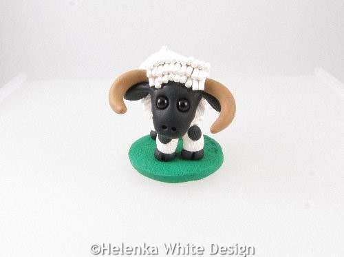 Valais Blacknose sheep with horns