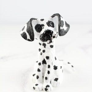 Dalmatian front.